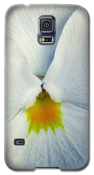 Pansy Flower 19 Galaxy S5 Case