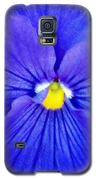 Pansy Flower 37 Galaxy S5 Case