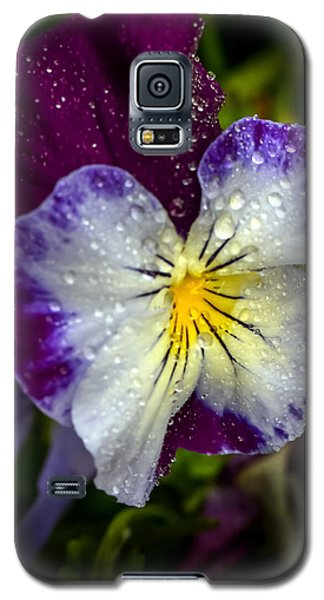 Pansy Galaxy S5 Case