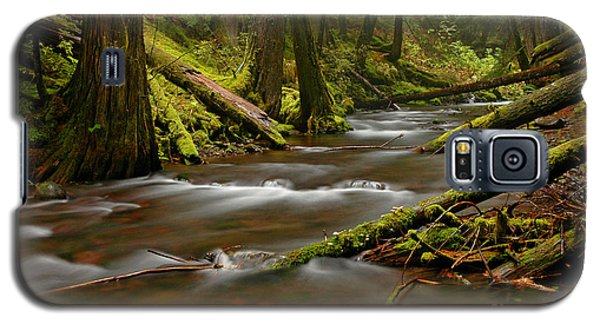 Galaxy S5 Case featuring the photograph Panther Creek Landscape by Nick  Boren