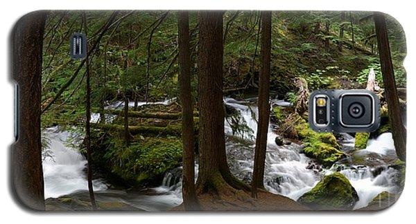 Panther Creek Panorama- Washington Galaxy S5 Case