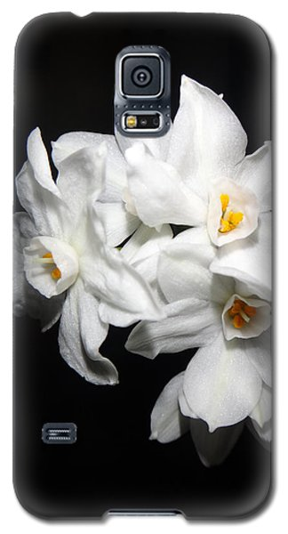 Paperwhites 2013  Galaxy S5 Case