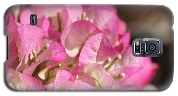 Galaxy S5 Case featuring the photograph Papery In Pink by Cathy Dee Janes