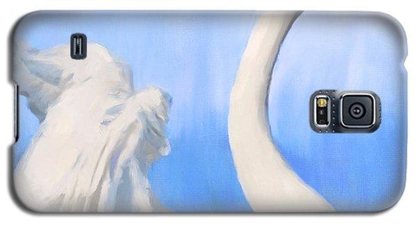 Paraati Galaxy S5 Case