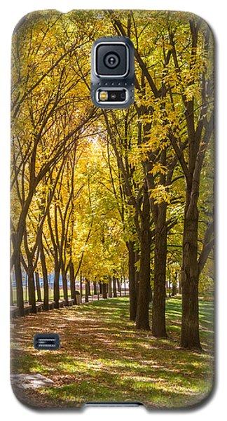 Parade Of Trees Galaxy S5 Case
