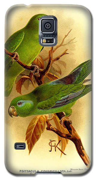 Parakeet Galaxy S5 Case - Parakeet by Dreyer Wildlife Print Collections