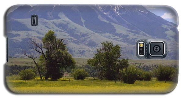 Pardise Valley  Galaxy S5 Case