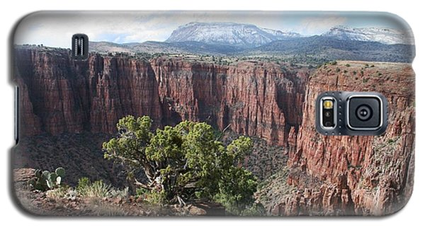 Galaxy S5 Case featuring the photograph Parker Canyon In The Sierra Ancha Arizona by Tom Janca