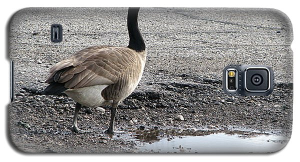 Galaxy S5 Case featuring the photograph Parking Lot Attendant by Michael Krek