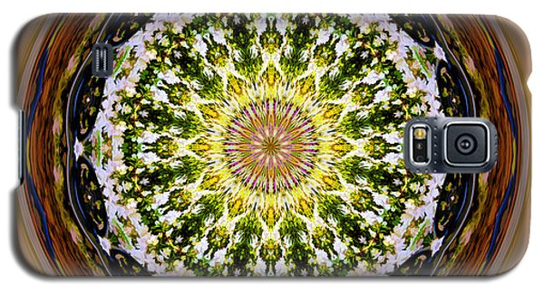 Parkside Mandala Galaxy S5 Case by Bill Barber