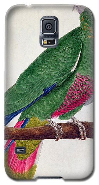 Parrot Galaxy S5 Case by Francois Nicolas Martinet