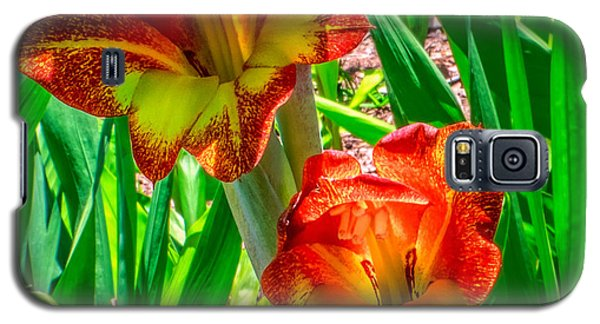Galaxy S5 Case featuring the photograph Parrot Gladiolus by Rob Sellers