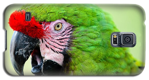 Parrot Galaxy S5 Case by Sebastian Musial