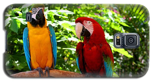 Parrot's Perch Galaxy S5 Case