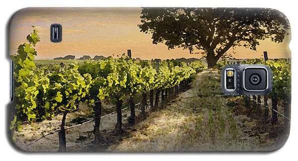 Paso Vineyard  Galaxy S5 Case