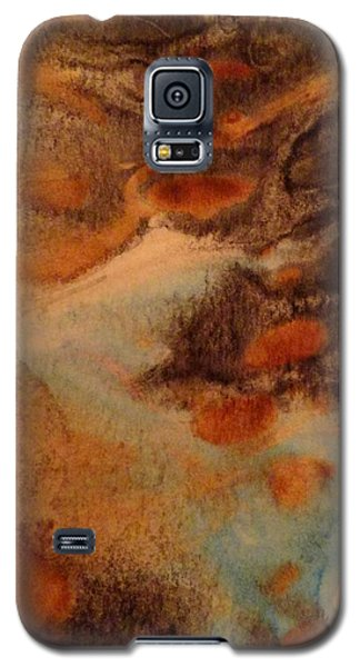 Passage Galaxy S5 Case