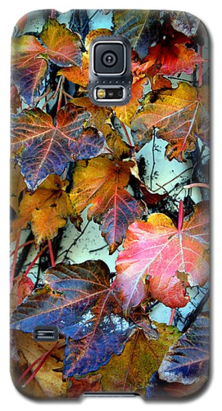 Passage Of Time Galaxy S5 Case