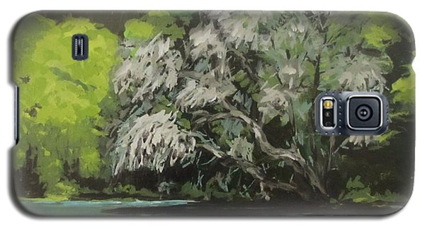 Galaxy S5 Case featuring the painting Passing by Karen Ilari