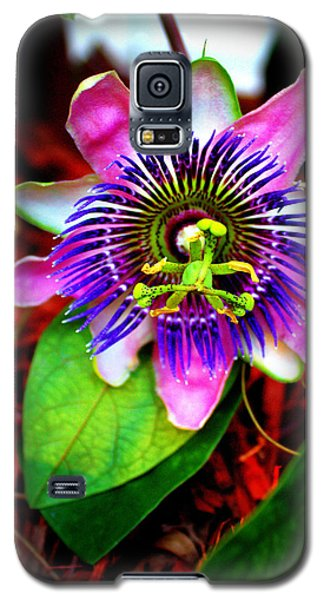 Passion Galaxy S5 Case by Faith Williams