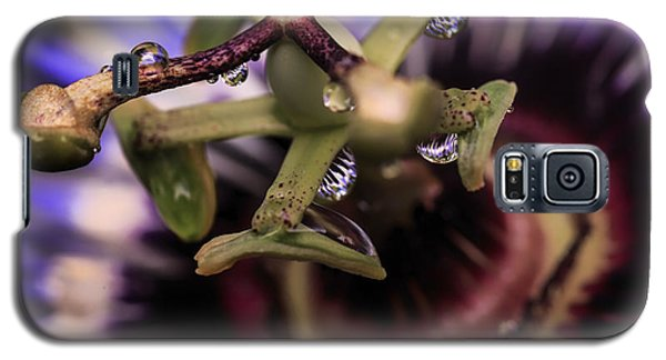 Passion Flower Droplets Galaxy S5 Case