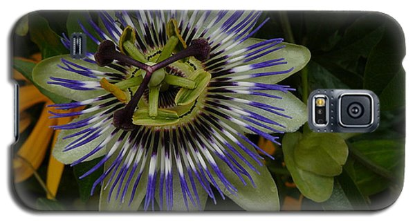 Galaxy S5 Case featuring the photograph Passion Flower by Jane Ford