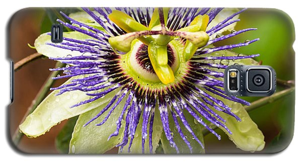 Galaxy S5 Case featuring the photograph Passion Flower by Patricia Schaefer