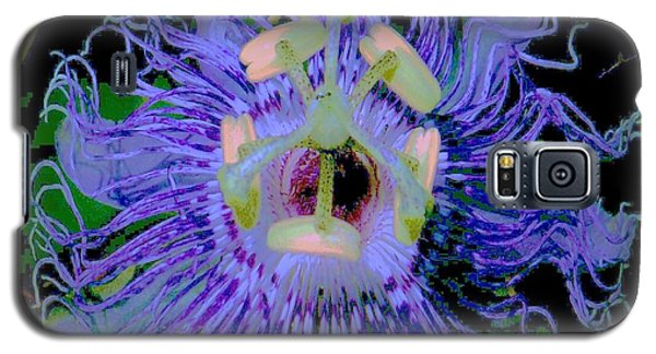 Galaxy S5 Case featuring the photograph Passion Flower  by Shirley Moravec