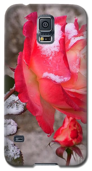 Galaxy S5 Case featuring the photograph Passion Of Life by Agnieszka Ledwon