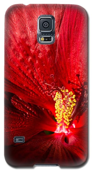 Passionate Ruby Red Silk Galaxy S5 Case