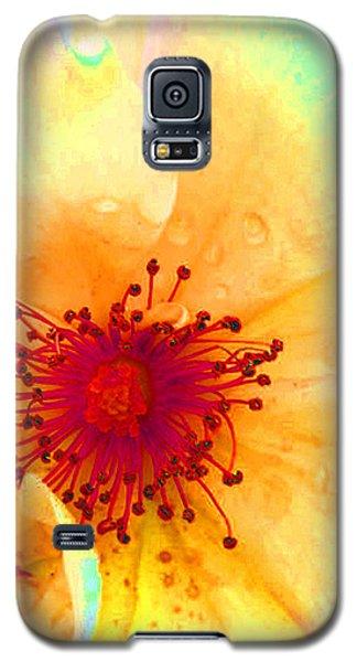 Pastel Garden Galaxy S5 Case