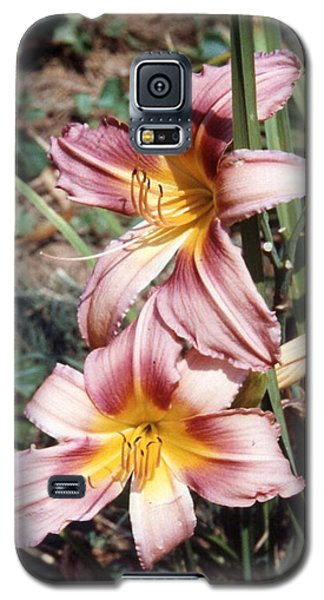 Pastel Purple Daylily Galaxy S5 Case