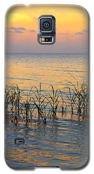 Pastel Shoreline 1 Galaxy S5 Case
