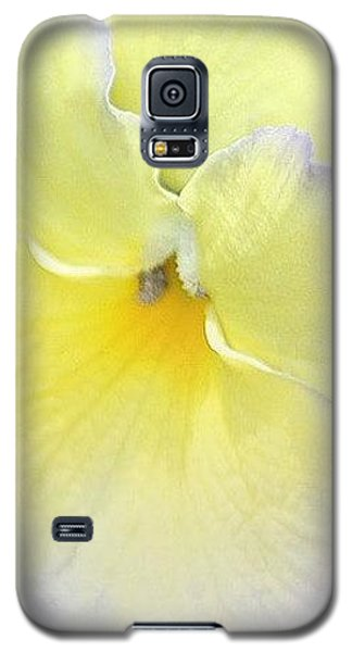 Galaxy S5 Case featuring the photograph Pastel by The Art Of Marilyn Ridoutt-Greene