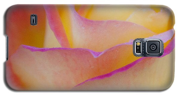 Galaxy S5 Case featuring the photograph Pastels by David Millenheft