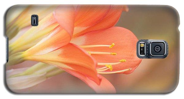 Pastels Galaxy S5 Case