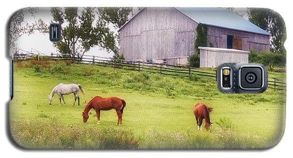 Pasture Galaxy S5 Case