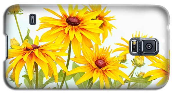 Patch Of Black-eyed Susan Galaxy S5 Case by Steve Augustin