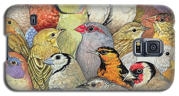 Parrot Galaxy S5 Case - Patchwork Birds by Ditz