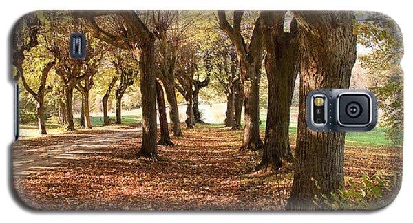 Path 1- Ostromecko Gardens Galaxy S5 Case