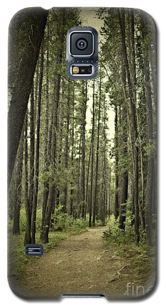Path In The Woods Galaxy S5 Case by Ivy Ho