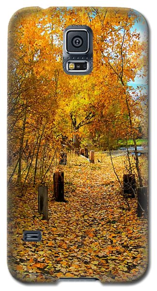 Path Of Fall Foliage Galaxy S5 Case by Kevin Bone
