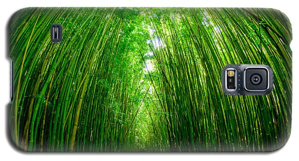 Path Through A Bamboo Forrest On Maui Hawaii Usa Galaxy S5 Case