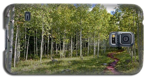Path Through The Aspens In Colorado Galaxy S5 Case by Karen Stephenson
