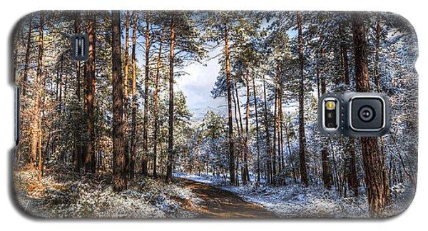 Path Throw The Snow Galaxy S5 Case