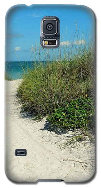 Path To Pass -a- Grille Galaxy S5 Case
