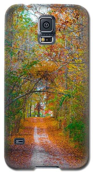 Path To The Fairies Galaxy S5 Case