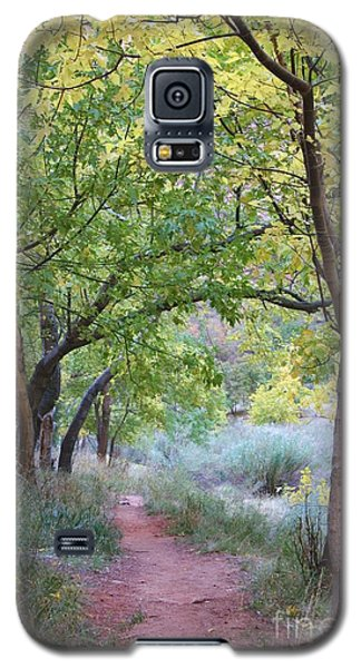 Galaxy S5 Case featuring the photograph Pathway To Heaven by Mary Lou Chmura