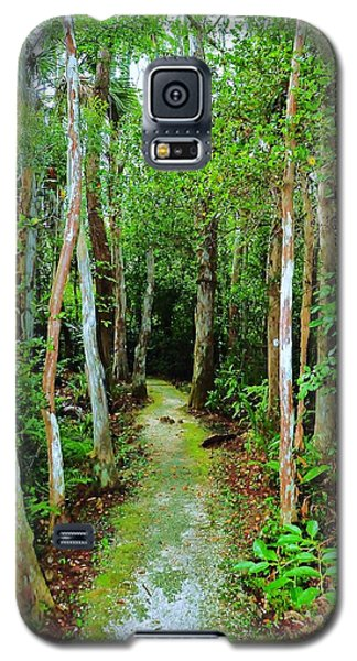 Pathway To The Rainforest Galaxy S5 Case by Kicking Bear  Productions