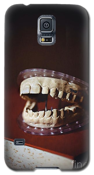 Galaxy S5 Case featuring the photograph Patient 910 by Trish Mistric