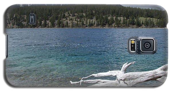 Patricia Lake - Jasper Galaxy S5 Case by Phil Banks